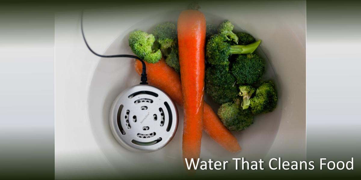 ozone water treatment, food shelf life, portable water purification